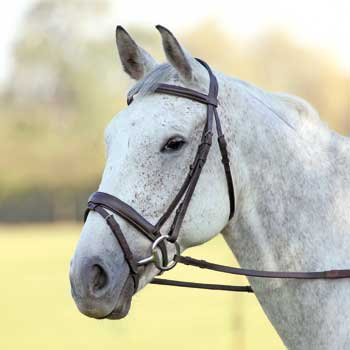 Aveimore Comfort Fit Bridle