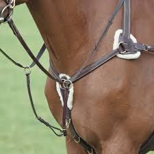 Shires Sailsbury Five Point Breastplate
